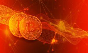 Zahlunsgstruktur bei Bitcoin Profit